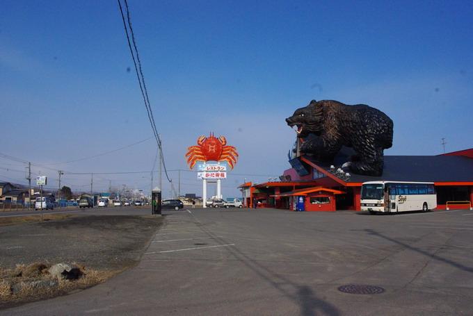 巨大なクマ