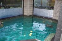 秋保グランドホテル大浴場1