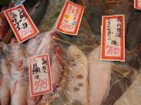 大目鯛など