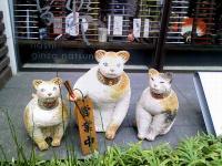 お箸を持つお箸屋の看板猫さん